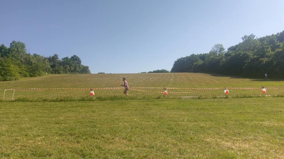 En uppförsbacke med gräs och buskar på båda sidorna. Längst ner i backen står fyra orienteringsskärmar utställda på rad och en löpare passerar.